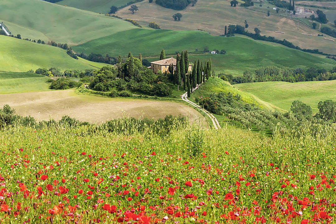 podere belvedere tuscany